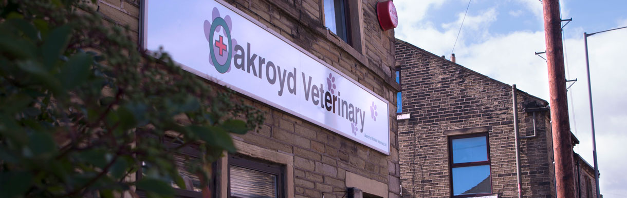 Oakroyd Veterinary