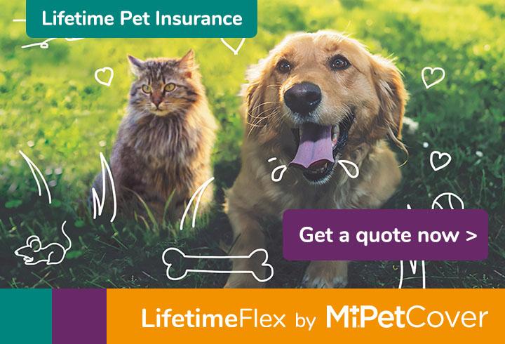 Get a quote for MiPet Cover LifetimeFlex
